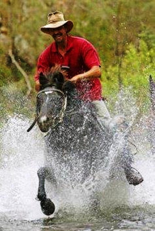 galloping in water