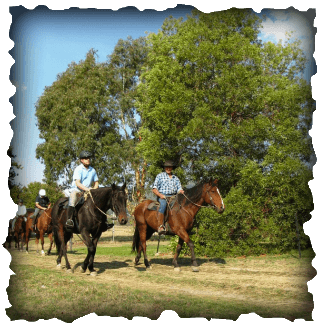 Kinloch Winery On Horseback